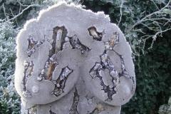 Els_van_der_Meulen_spare ribs_beton